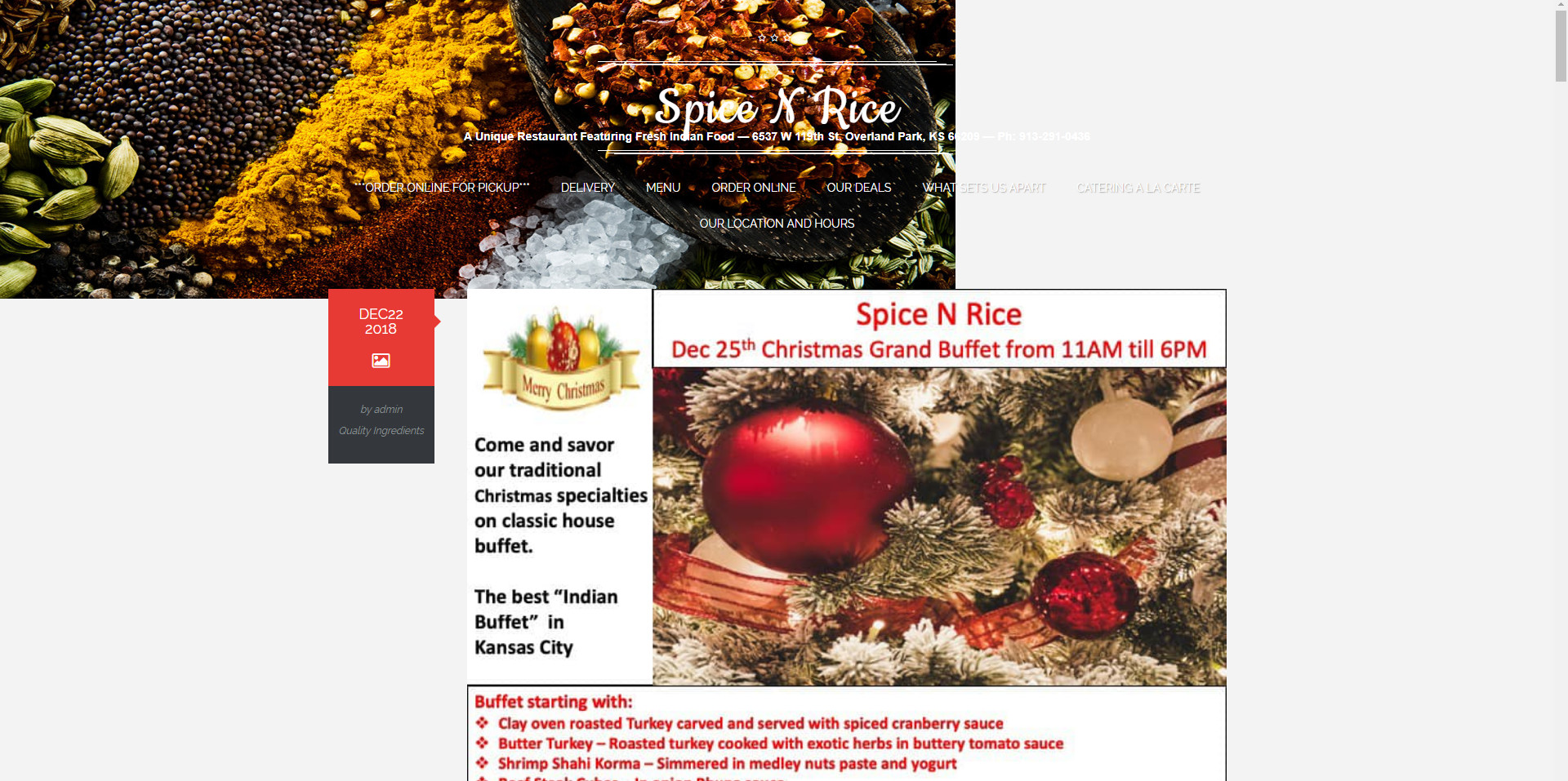 spice n rice website before